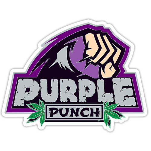 Purple Punch Sticker